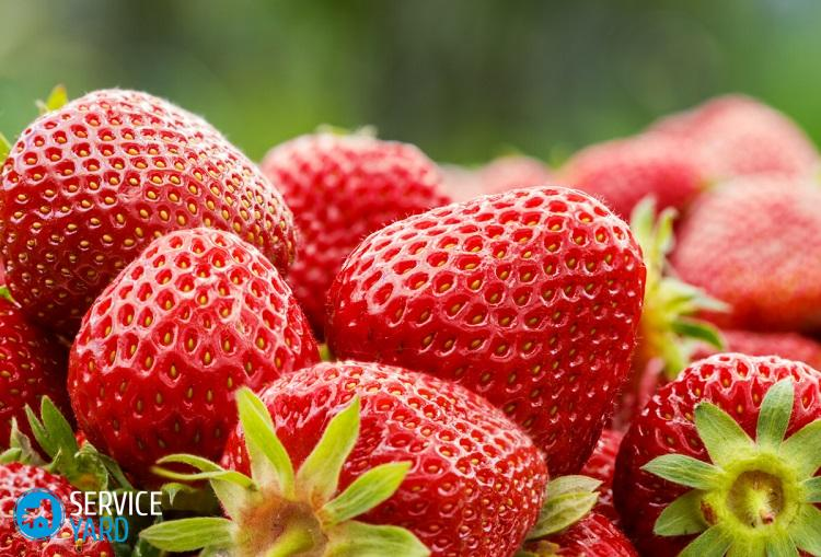 Fresh strawberry close-up, red vitamin fruits on blurred background